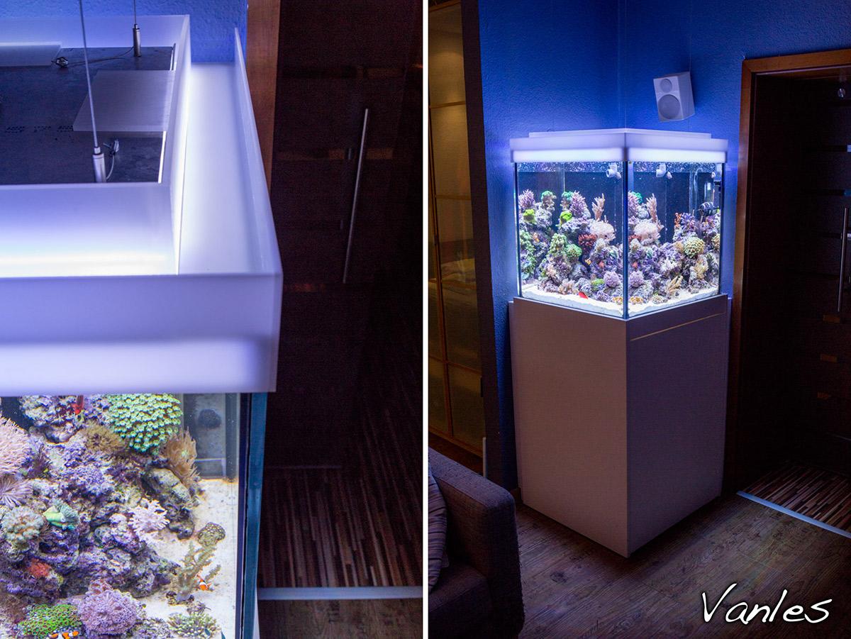 250l w rfel aquarium vorstellung dein meerwasser for Aquarium abdeckung